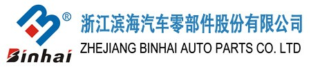 Zhejiang Binhai Auto Parts Co. Ltd